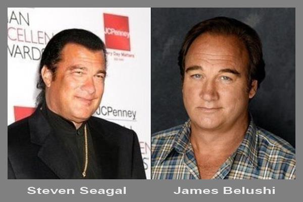 Steven-Seagal-Jim-Belushi