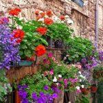 Etroubles borgo fiorito